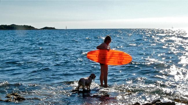 Baden mit Hund in Zelena Laguna