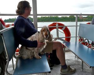 Unterwegs in Venedig mit Hund